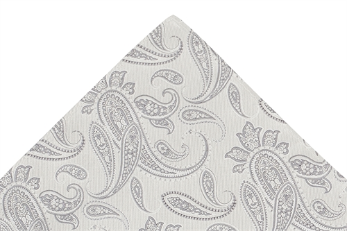 Ted Baker ivory/silver paisley tie & hank set