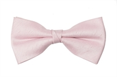 Creswell Bow Tie