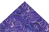 Jnr Ted Baker Purple Patterned tie & hank set